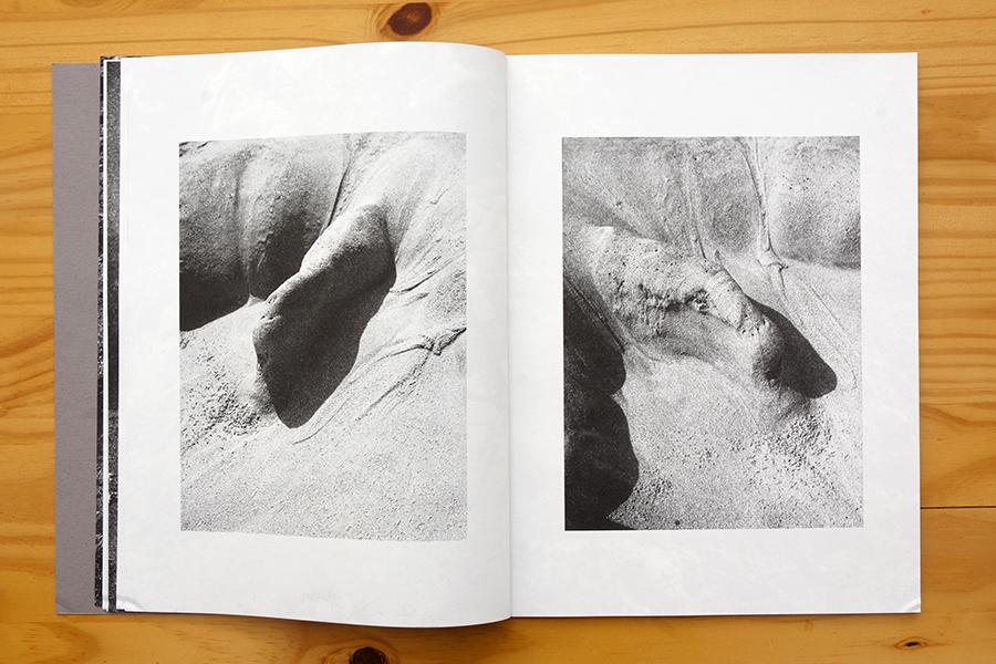 Densidad relativa, de Javier Aravena